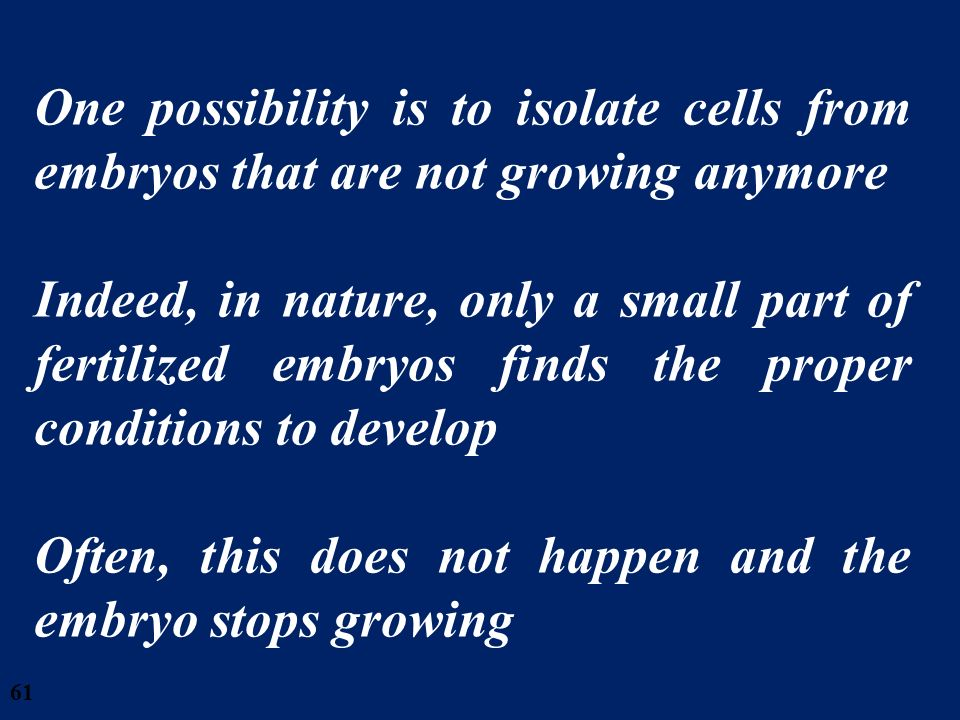 61 One possibility is to isolate cells from embryos that are not growing anymore Indeed, in nature, only a small part of fertilized embryos finds the