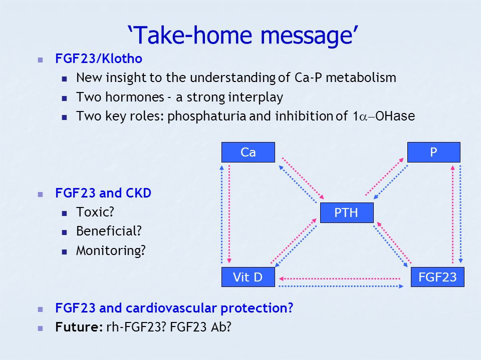 Take-home message FGF23/Klotho New insight to the understanding of Ca-P metabolism Two hormones - a strong interplay Two key roles: phosphaturia and inhibition of 1 OH ase FGF23 and CKD Toxic.