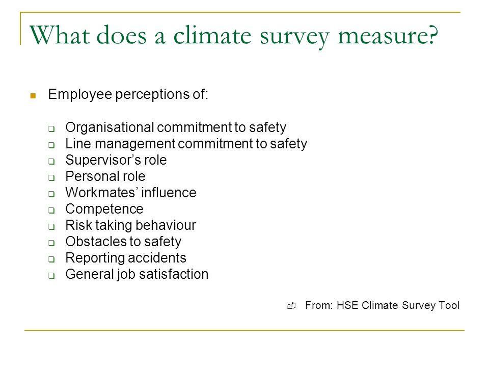 What does a climate survey measure.