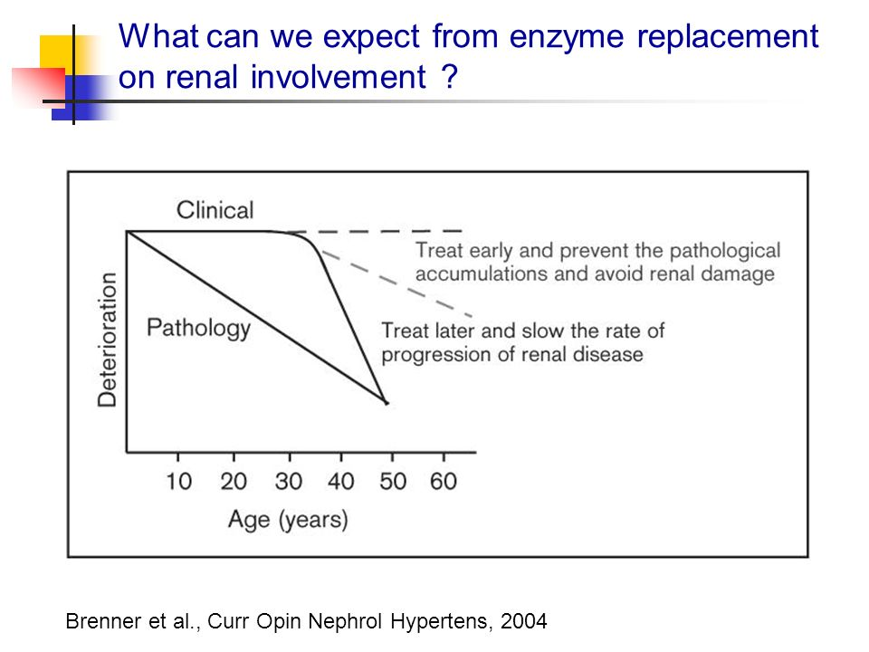 Brenner et al., Curr Opin Nephrol Hypertens, 2004 What can we expect from enzyme replacement on renal involvement ?