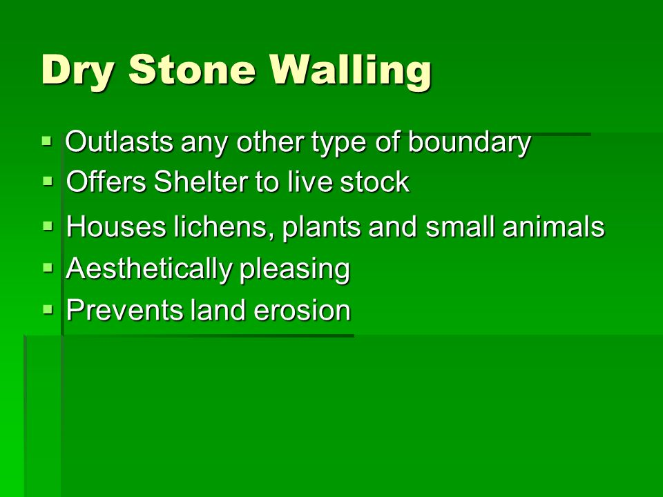 Dry Stone Walling Outlasts any other type of boundary Outlasts any other type of boundary Offers Shelter to live stock Offers Shelter to live stock Houses lichens, plants and small animals Houses lichens, plants and small animals Aesthetically pleasing Aesthetically pleasing Prevents land erosion Prevents land erosion