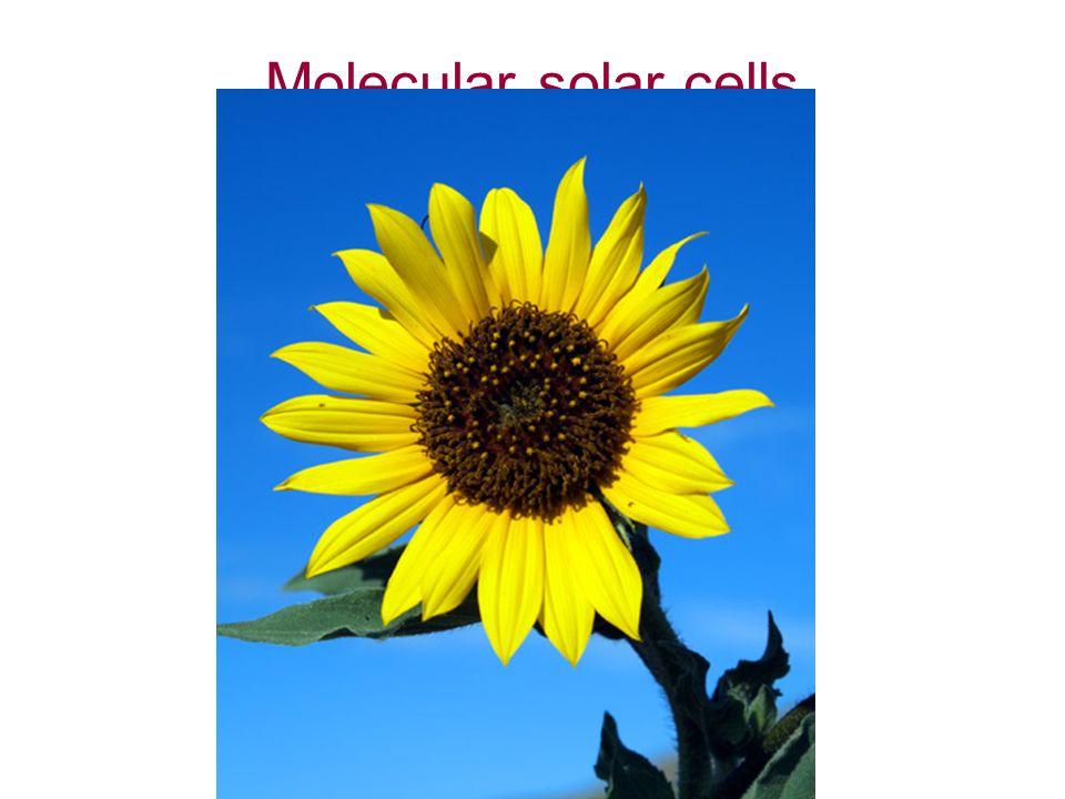 Molecular solar cells