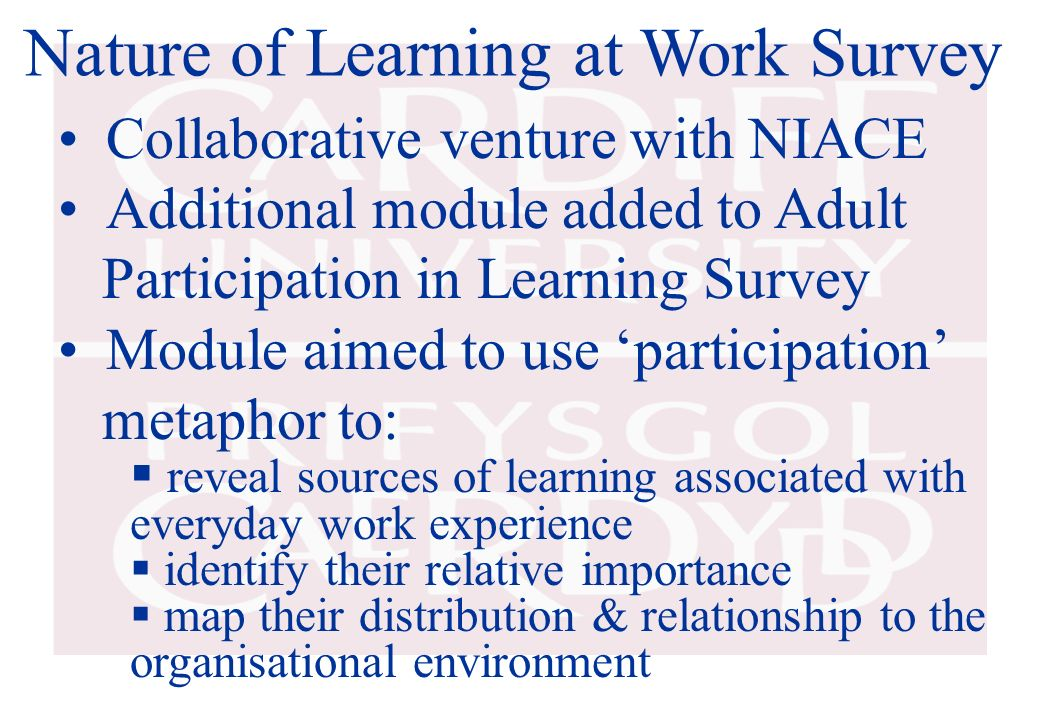 Nature of Learning at Work Survey Collaborative venture with NIACE Additional module added to Adult Participation in Learning Survey Module aimed to u