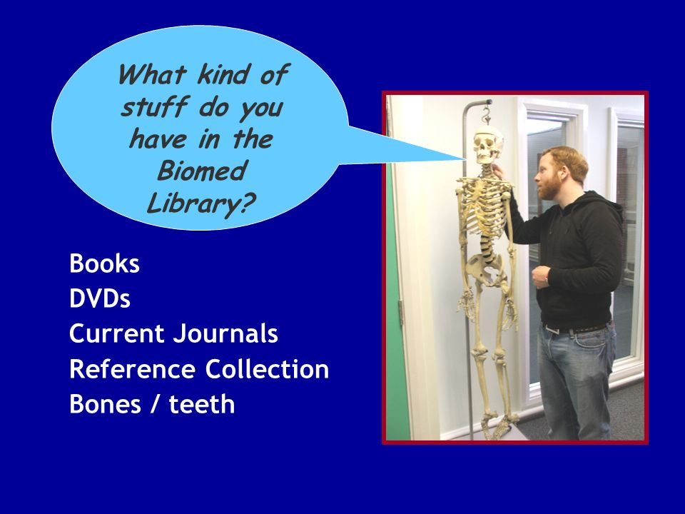 Books DVDs Current Journals Reference Collection Bones / teeth What kind of stuff do you have in the Biomed Library