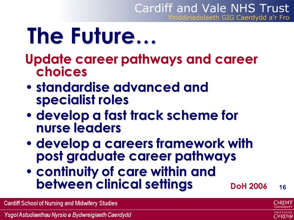 Cardiff School of Nursing and Midwifery Studies Ysgol Astudiaethau Nyrsio a Bydwreigiaeth Caerdydd 16 The Future… Update career pathways and career choices standardise advanced and specialist roles standardise advanced and specialist roles develop a fast track scheme for nurse leaders develop a fast track scheme for nurse leaders develop a careers framework with post graduate career pathways develop a careers framework with post graduate career pathways continuity of care within and between clinical settings continuity of care within and between clinical settings DoH 2006