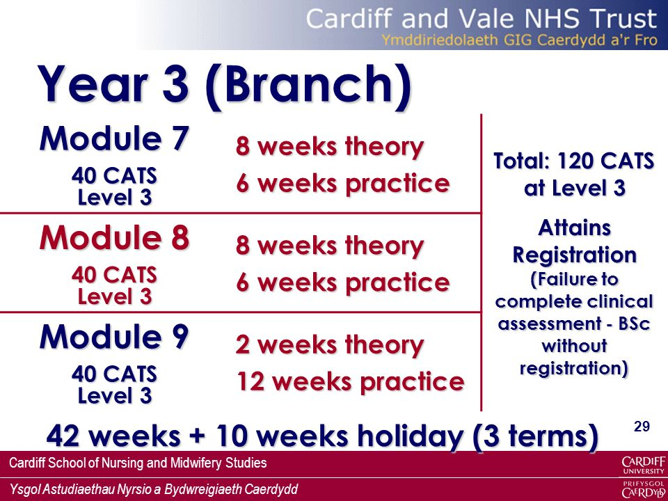 Cardiff School of Nursing and Midwifery Studies Ysgol Astudiaethau Nyrsio a Bydwreigiaeth Caerdydd 29 Year 3 (Branch) Module 7 40 CATS Level 3 8 weeks theory 6 weeks practice Total: 120 CATS at Level 3 Attains Registration (Failure to complete clinical assessment - BSc without registration) Module 8 40 CATS Level 3 8 weeks theory 6 weeks practice Module 9 40 CATS Level 3 2 weeks theory 12 weeks practice 42 weeks + 10 weeks holiday (3 terms)