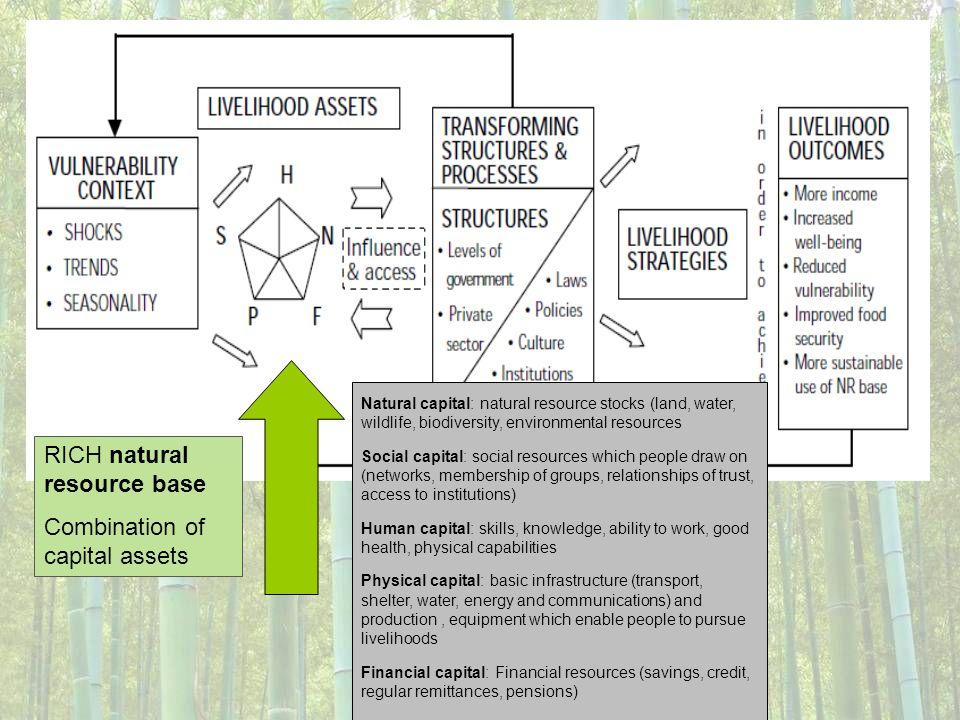 RICH natural resource base Combination of capital assets Natural capital: natural resource stocks (land, water, wildlife, biodiversity, environmental