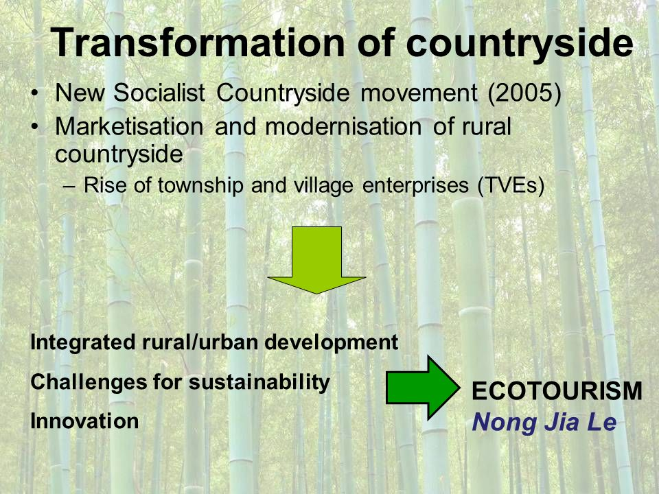 Transformation of countryside New Socialist Countryside movement (2005) Marketisation and modernisation of rural countryside –Rise of township and vil