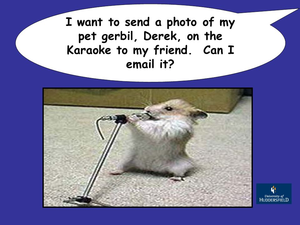 I want to send a photo of my pet gerbil, Derek, on the Karaoke to my friend. Can I  it