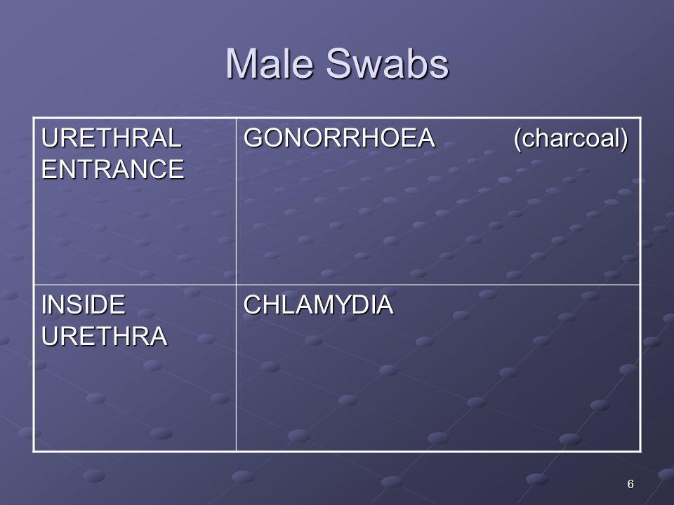 6 Male Swabs URETHRAL ENTRANCE GONORRHOEA (charcoal) INSIDE URETHRA CHLAMYDIA