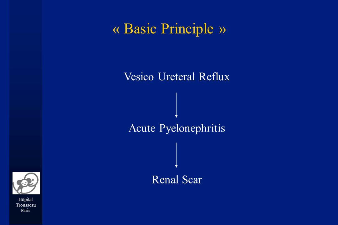 Hôpital Trousseau Paris Vesico Ureteral Reflux Acute Pyelonephritis Renal Scar « Basic Principle »
