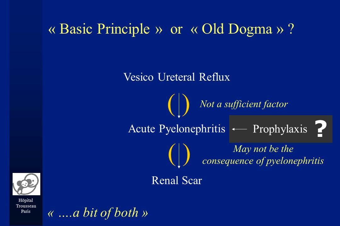 Hôpital Trousseau Paris Vesico Ureteral Reflux Acute Pyelonephritis Renal Scar « Basic Principle » or « Old Dogma » ? « ….a bit of both » Not a suffic