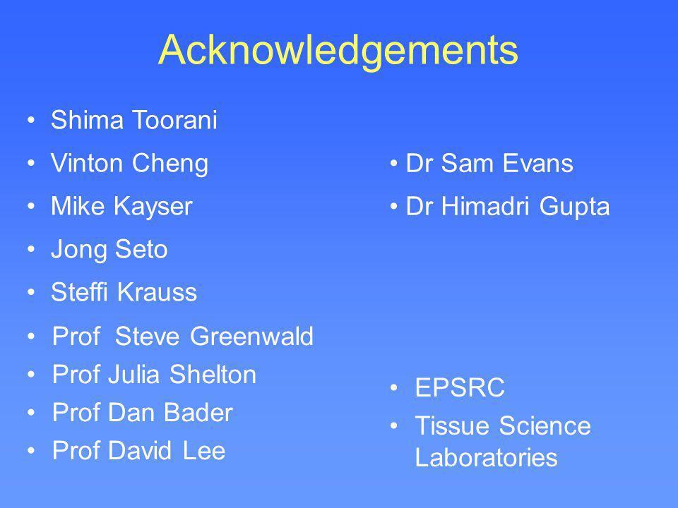 Acknowledgements Shima Toorani Vinton Cheng Mike Kayser Jong Seto Steffi Krauss Prof Steve Greenwald Prof Julia Shelton Prof Dan Bader Prof David Lee