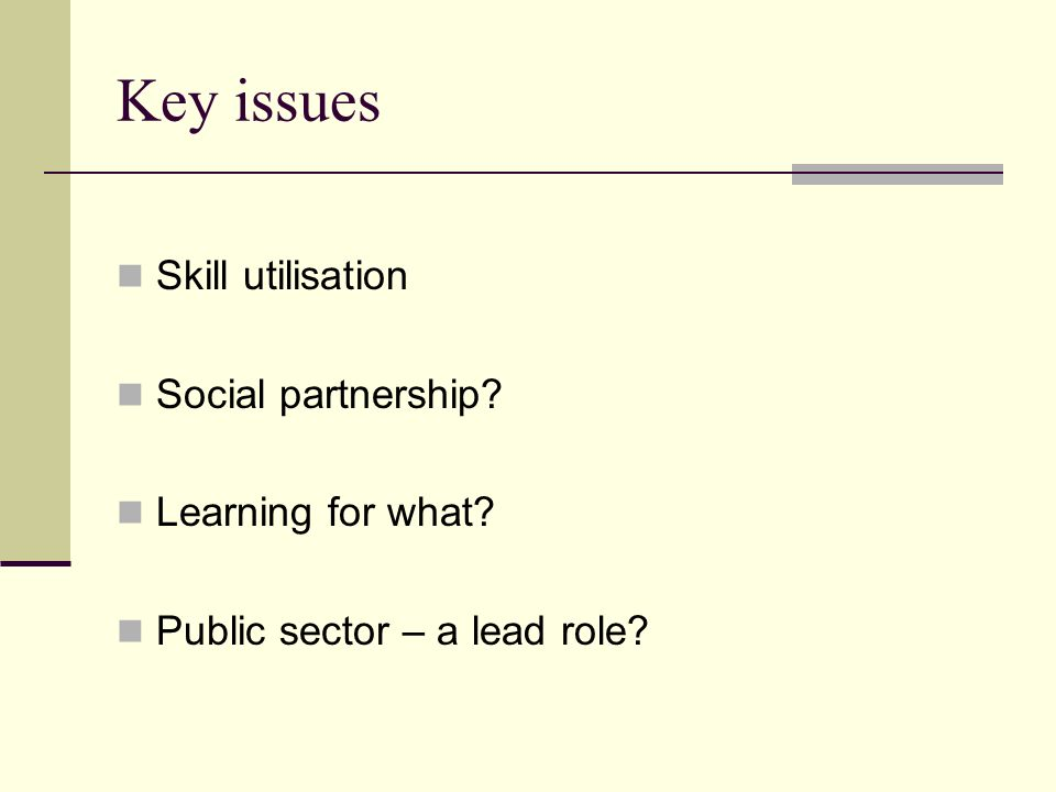 Key issues Skill utilisation Social partnership Learning for what Public sector – a lead role