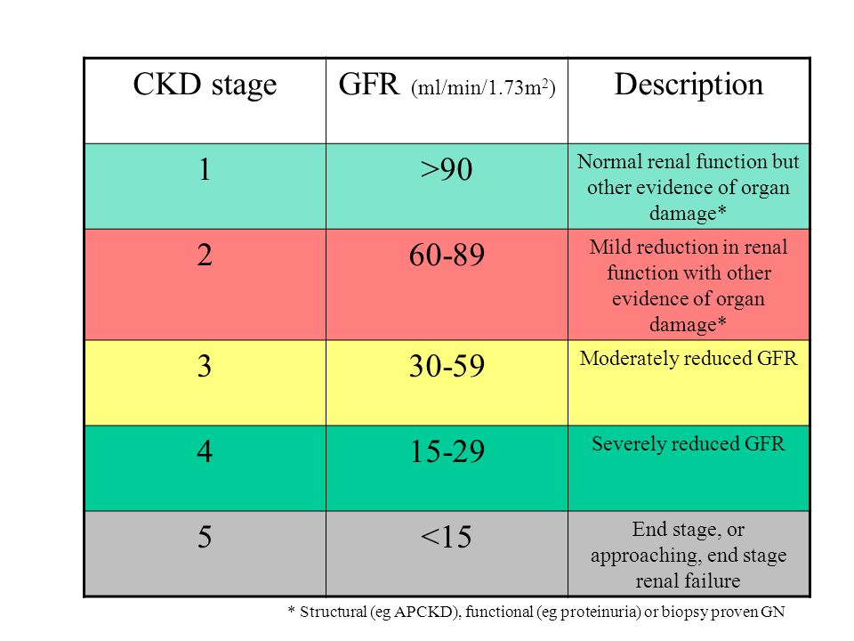 CKD stageGFR (ml/min/1.73m 2 ) Description 1>90 Normal renal function but other evidence of organ damage* 260-89 Mild reduction in renal function with