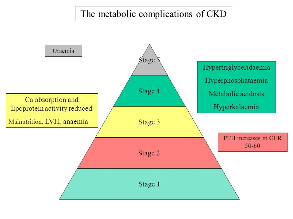 Stage 5 Stage 4 Stage 3 Stage 2 Stage 1 PTH increases at GFR 50-60 Ca absorption and lipoprotein activity reduced Malnutrition, LVH, anaemia Hypertrig