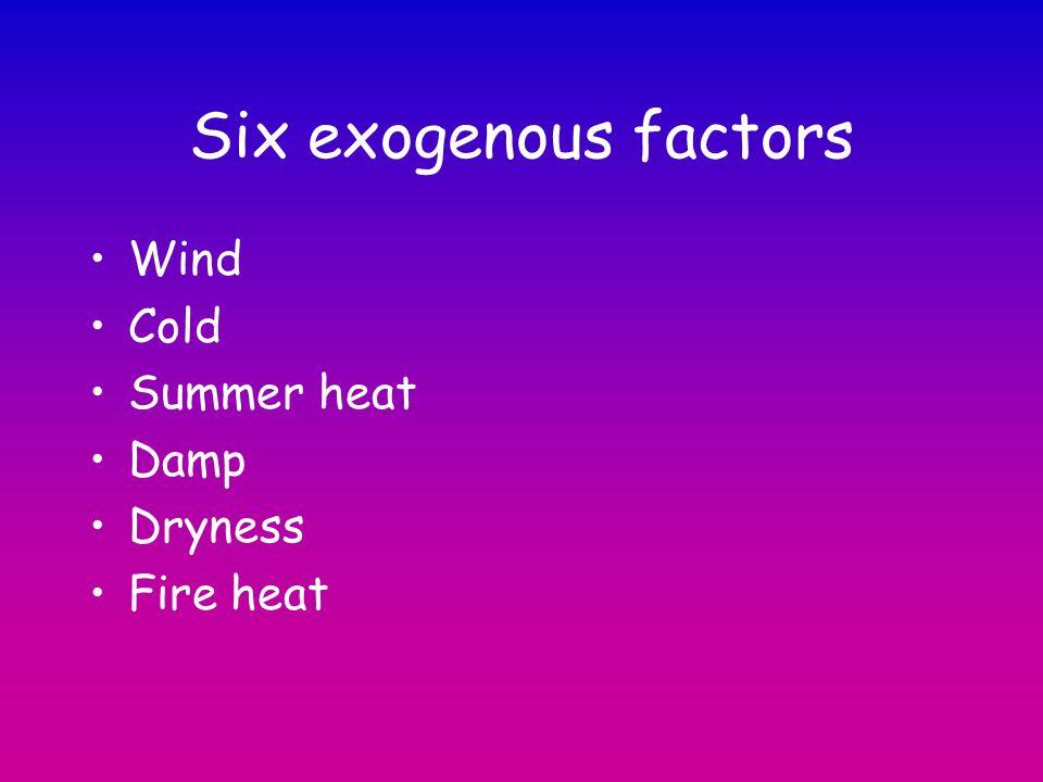 Six exogenous factors Wind Cold Summer heat Damp Dryness Fire heat