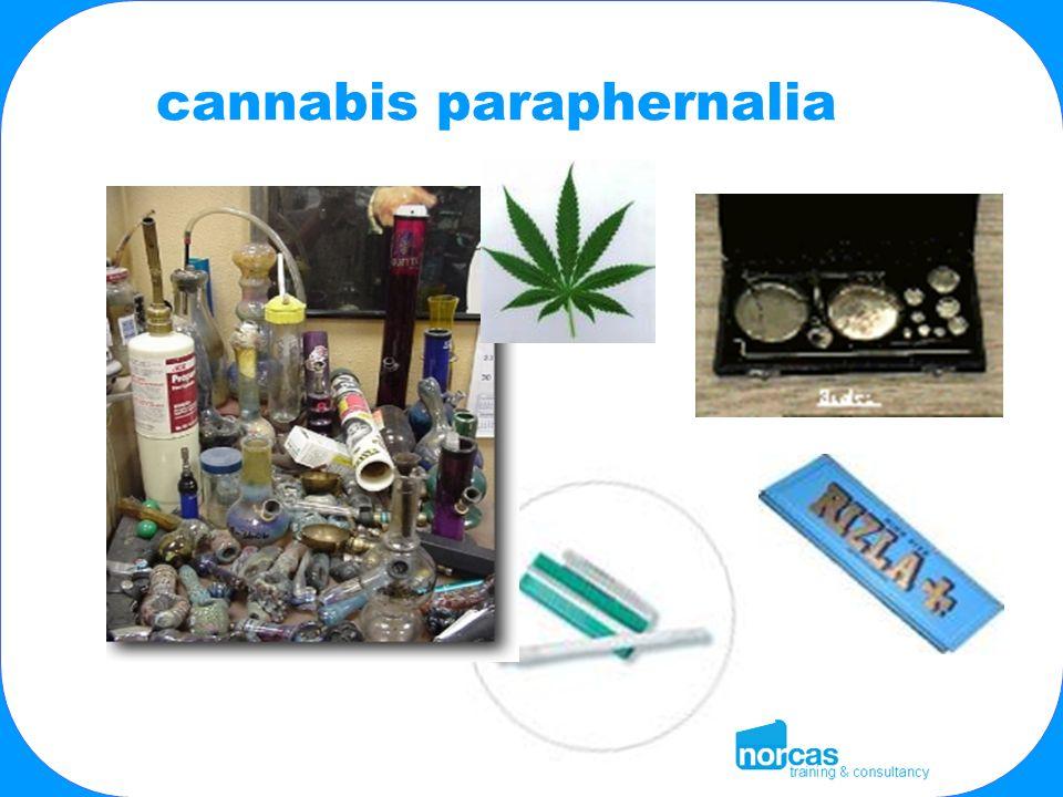 cannabis paraphernalia