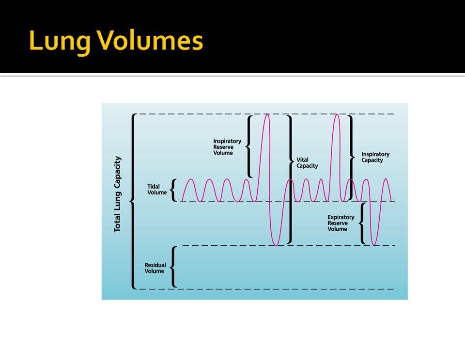 CT Scan ECG Echo Pulse Oximetry Sputum Culture Transfer factor for carbon monoxide (T L CO) Serial Domiciliary Peak Flows Alpha-1-antitrypsin