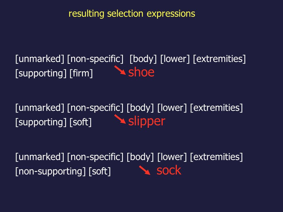 [unmarked] [non-specific] [body] [lower] [extremities] [supporting] [firm] shoe [unmarked] [non-specific] [body] [lower] [extremities] [supporting] [soft] slipper [unmarked] [non-specific] [body] [lower] [extremities] [non-supporting] [soft] sock resulting selection expressions