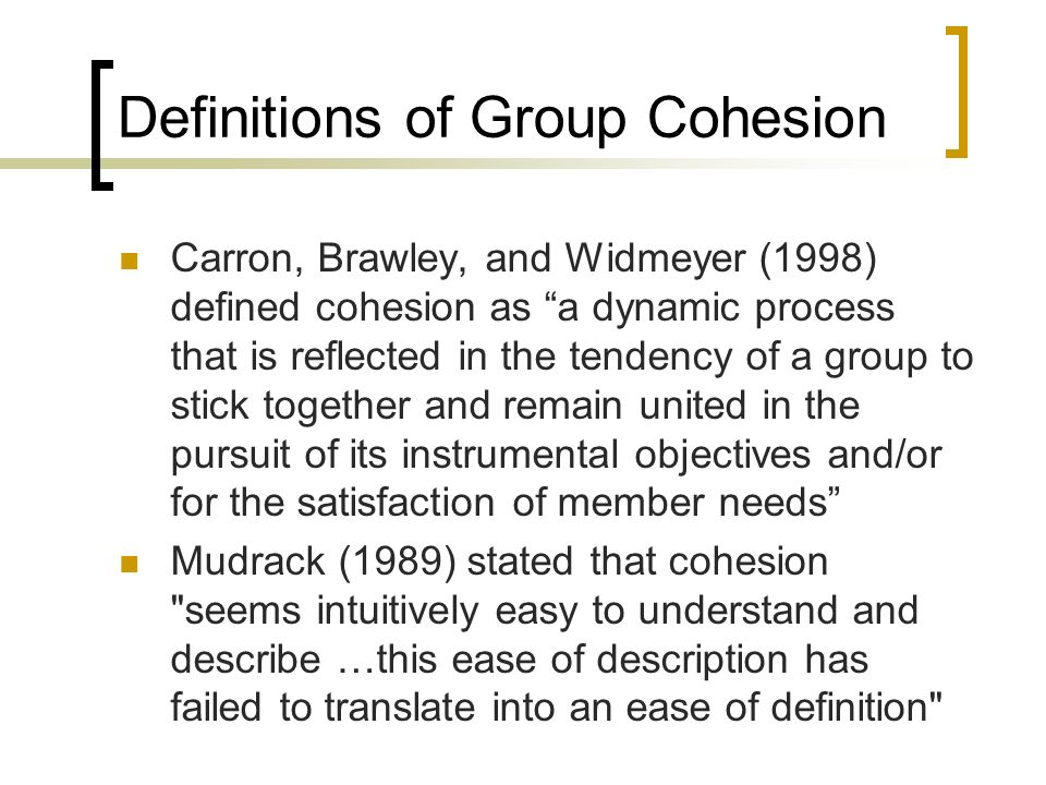 What is Group Cohesion.