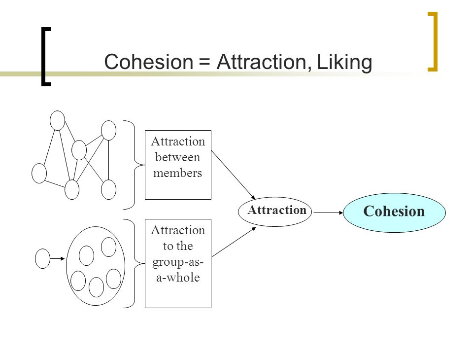 Carrons general conceptual model of cohesion offered four general antecedents of cohesion 1.