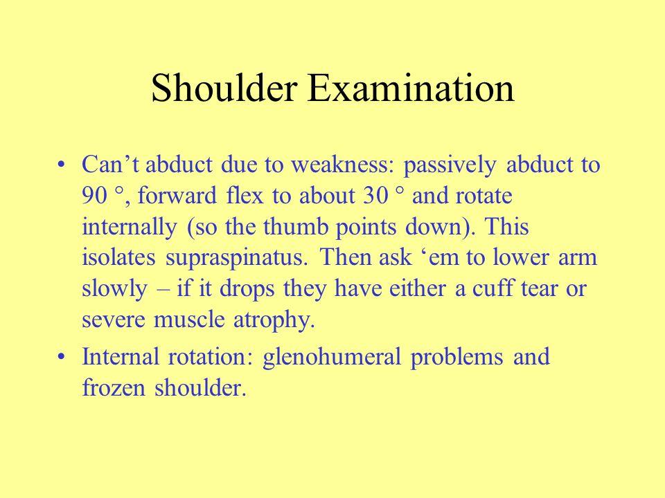 Elbow Lateral epicondylitis.–Wrist flexors.