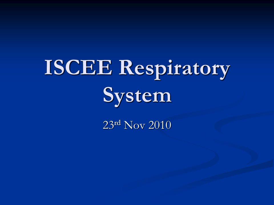 ISCEE Respiratory System 23 rd Nov 2010
