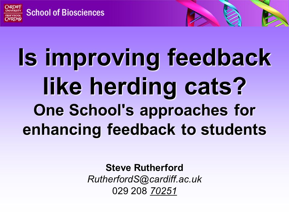 Is improving feedback like herding cats.