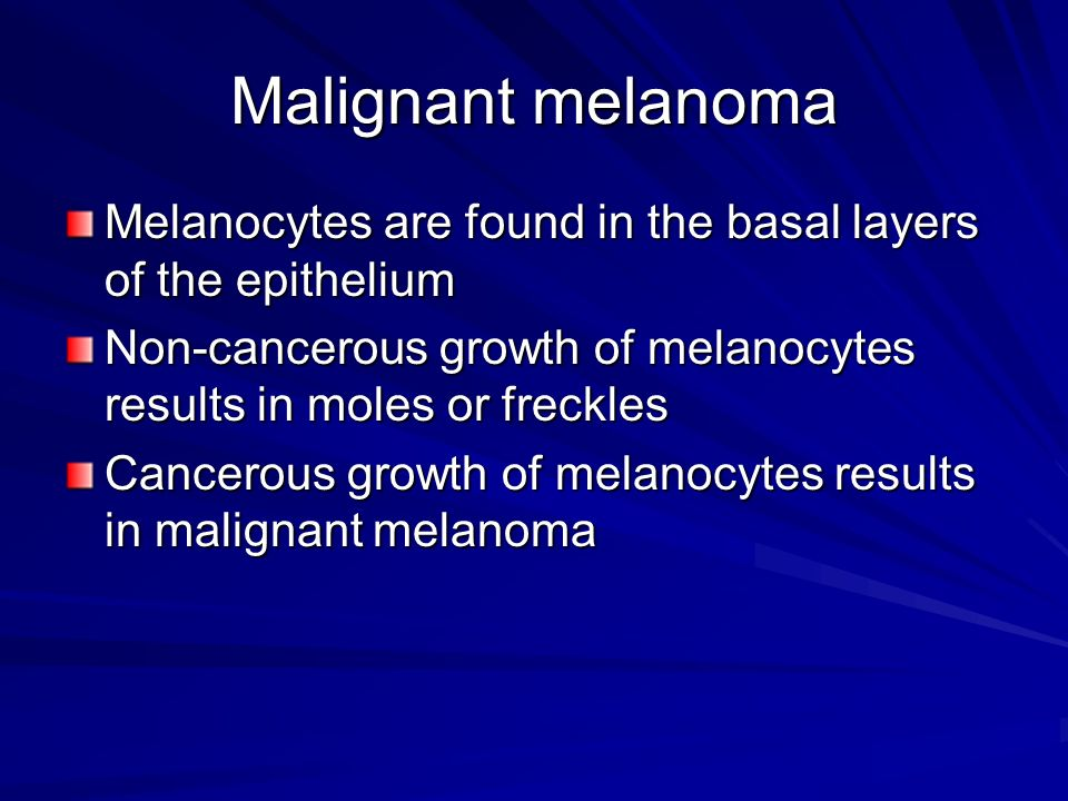 Malignant melanoma Melanocytes are found in the basal layers of the epithelium Non-cancerous growth of melanocytes results in moles or freckles Cancer
