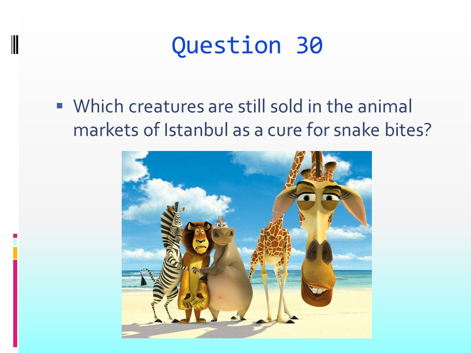 Question 30 Which creatures are still sold in the animal markets of Istanbul as a cure for snake bites