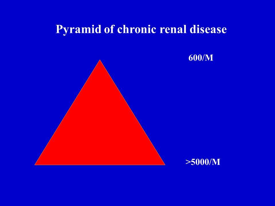 Pyramid of chronic renal disease 600/M >5000/M