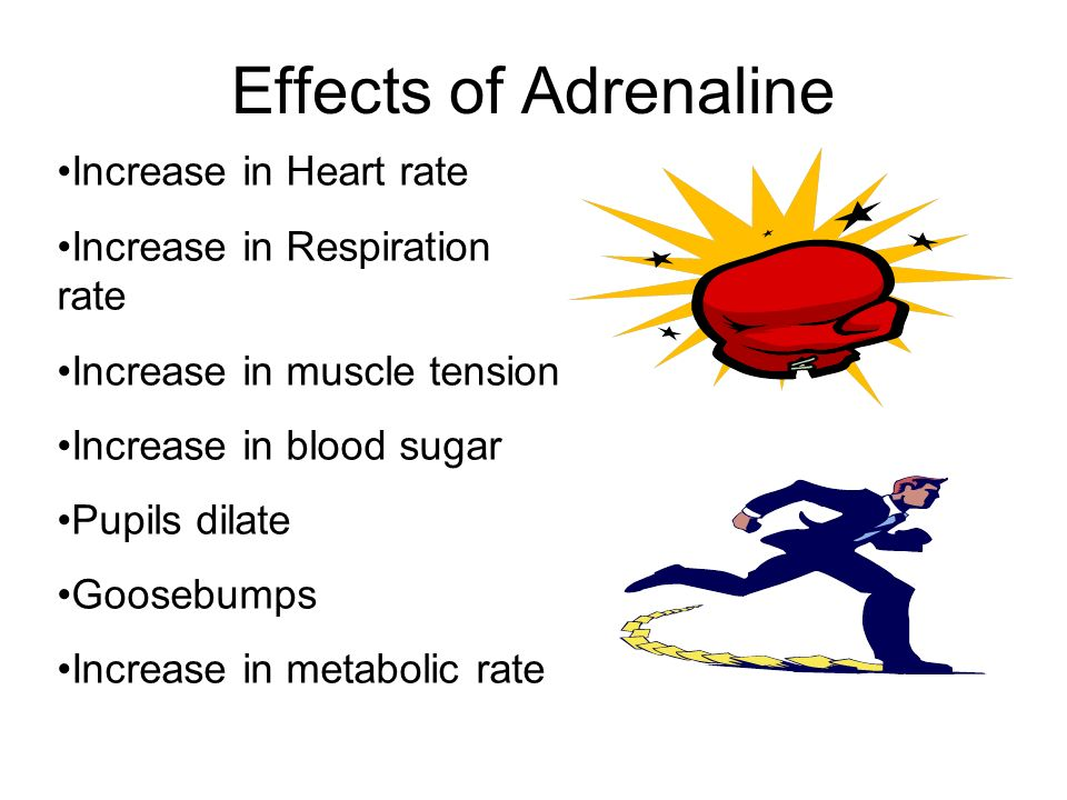 Effects of Adrenaline Increase in Heart rate Increase in Respiration rate Increase in muscle tension Increase in blood sugar Pupils dilate Goosebumps Increase in metabolic rate