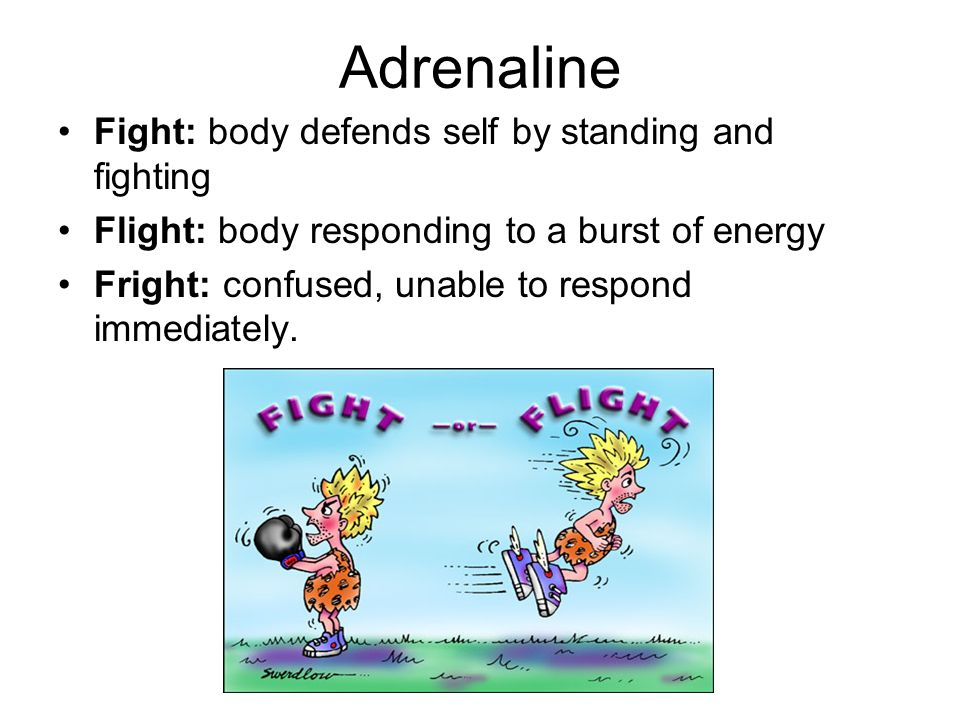 Adrenaline Fight: body defends self by standing and fighting Flight: body responding to a burst of energy Fright: confused, unable to respond immediat