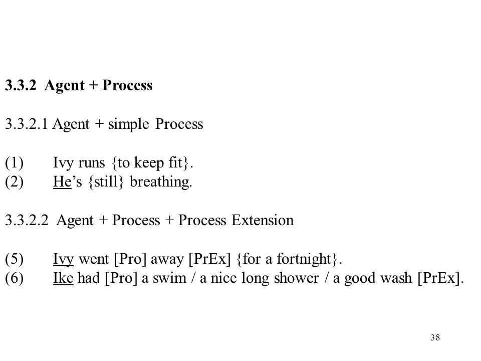 38 3.3.2 Agent + Process 3.3.2.1 Agent + simple Process (1)Ivy runs {to keep fit}. (2)Hes {still} breathing. 3.3.2.2 Agent + Process + Process Extensi