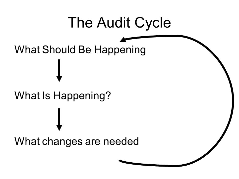 The Audit Cycle What Should Be Happening What Is Happening? What changes are needed