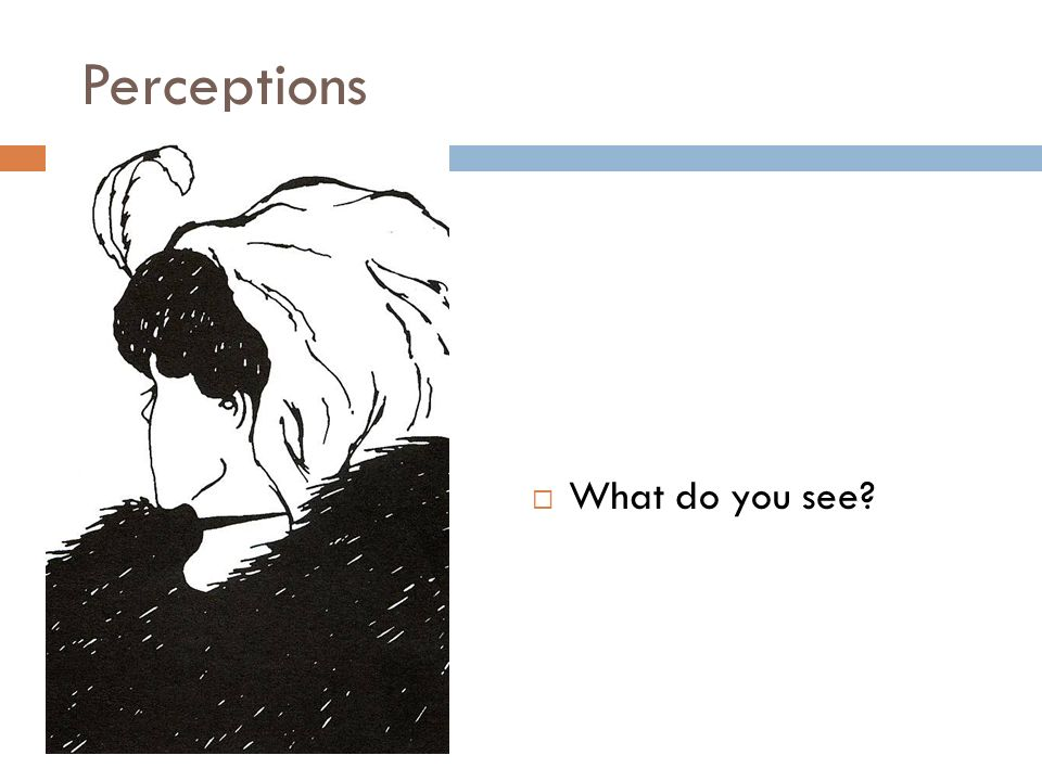 Perceptions What do you see