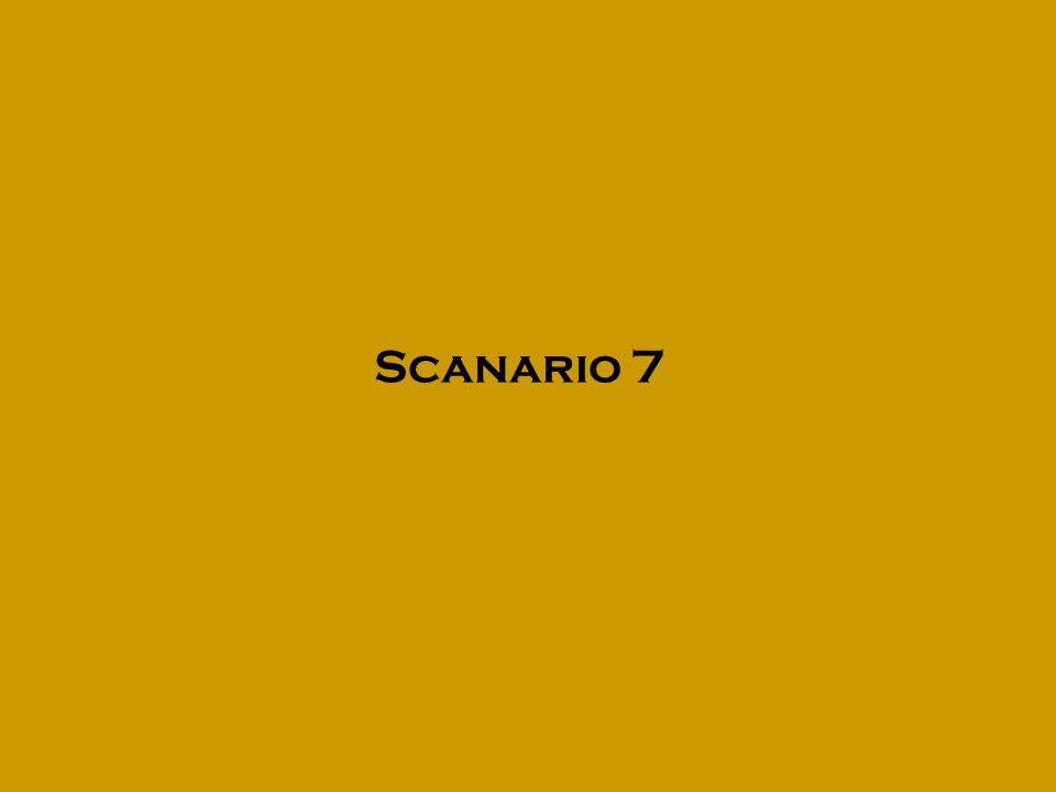 Scanario 7
