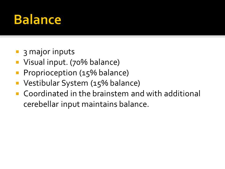 3 major inputs Visual input.