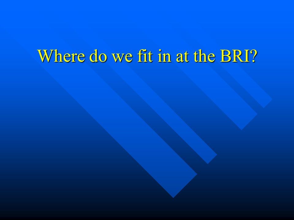Where do we fit in at the BRI?