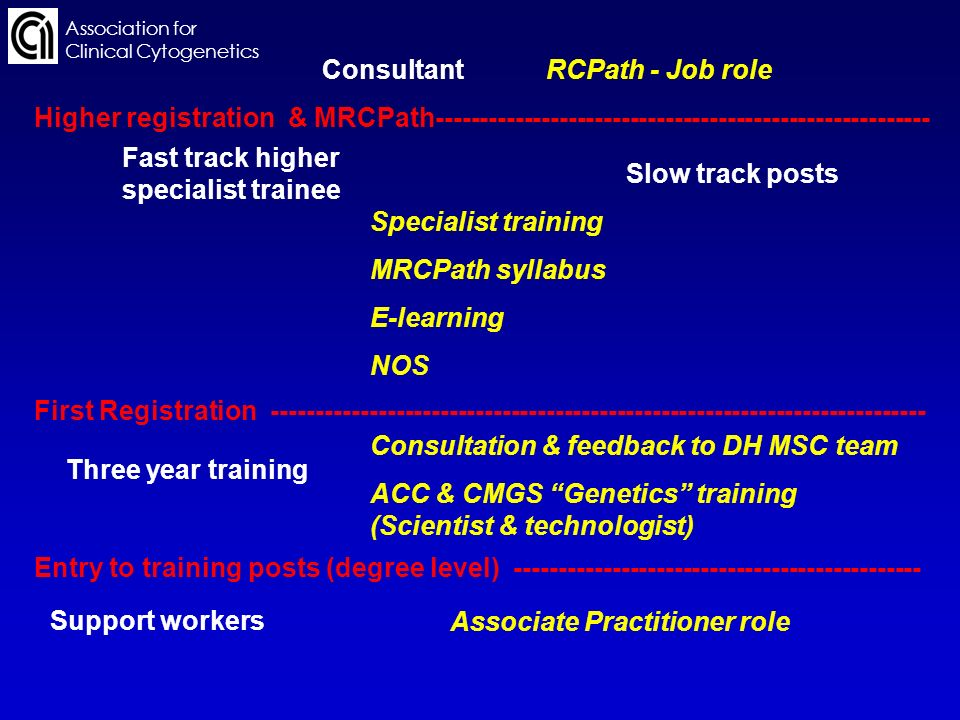 Association for Clinical Cytogenetics Support workers Entry to training posts (degree level) ---------------------------------------------- Three year training First Registration -------------------------------------------------------------------------- Fast track higher specialist trainee Slow track posts Higher registration & MRCPath-------------------------------------------------------- Consultant Associate Practitioner role Consultation & feedback to DH MSC team ACC & CMGS Genetics training (Scientist & technologist) Specialist training MRCPath syllabus E-learning NOS RCPath - Job role