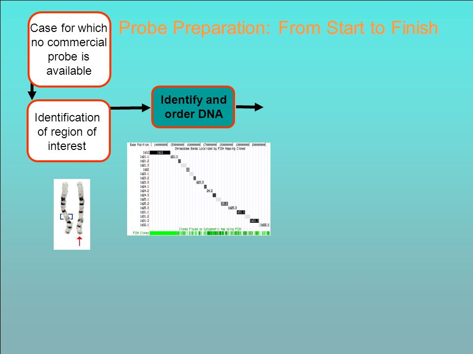 Identify and order DNA Identification of region of interest Probe Preparation: From Start to Finish Case for which no commercial probe is available