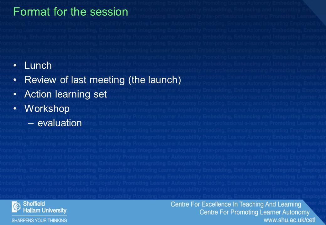 Format for the session Lunch Review of last meeting (the launch) Action learning set Workshop –evaluation