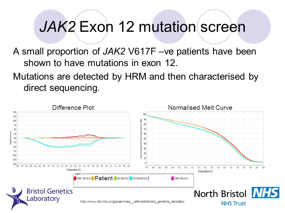 JAK2 Exon 12 mutation screen A small proportion of JAK2 V617F –ve patients have been shown to have mutations in exon 12. Mutations are detected by HRM