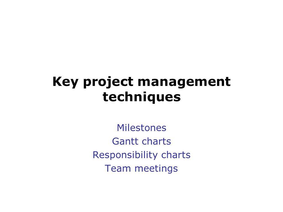 Key project management techniques Milestones Gantt charts Responsibility charts Team meetings