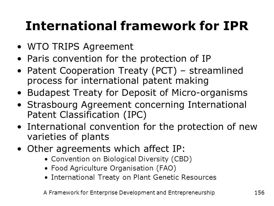 A Framework for Enterprise Development and Entrepreneurship156 International framework for IPR WTO TRIPS Agreement Paris convention for the protection