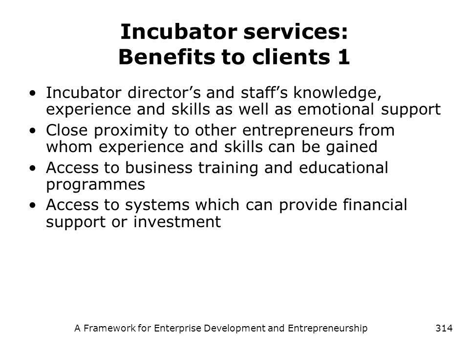 A Framework for Enterprise Development and Entrepreneurship314 Incubator services: Benefits to clients 1 Incubator directors and staffs knowledge, exp