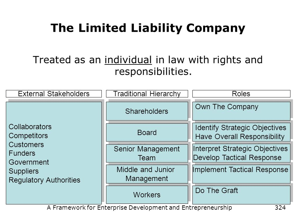 A Framework for Enterprise Development and Entrepreneurship324 The Limited Liability Company Treated as an individual in law with rights and responsib