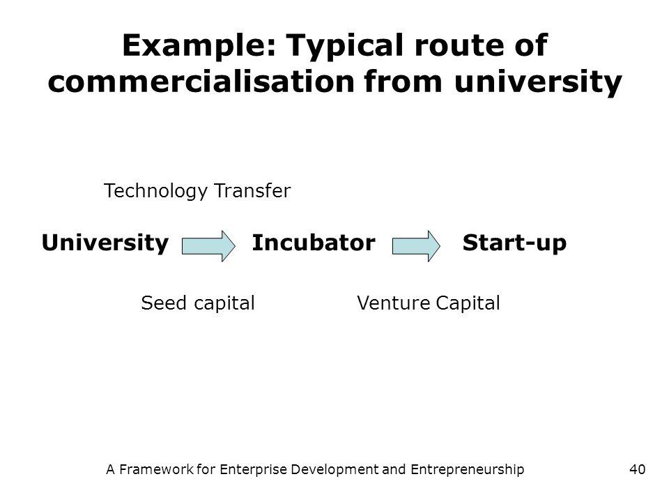 A Framework for Enterprise Development and Entrepreneurship40 Example: Typical route of commercialisation from university UniversityIncubatorStart-up