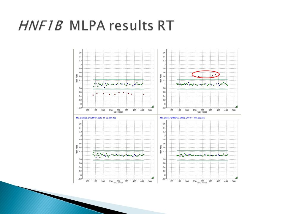 HNF1B MLPA results RT